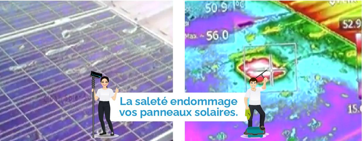 Panneaux solaires en verre micro structuré avec lichens