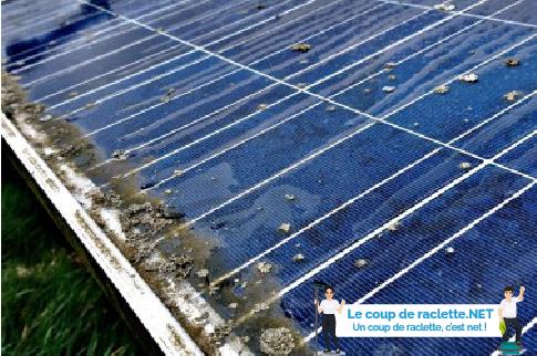 Panneaux solaires photovoltaïques début de lichens