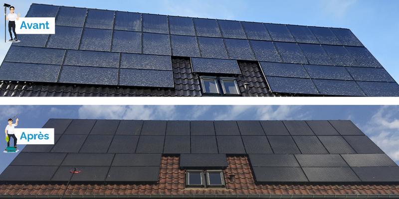 Panneaux solaires photovoltaïques sale avec lichens